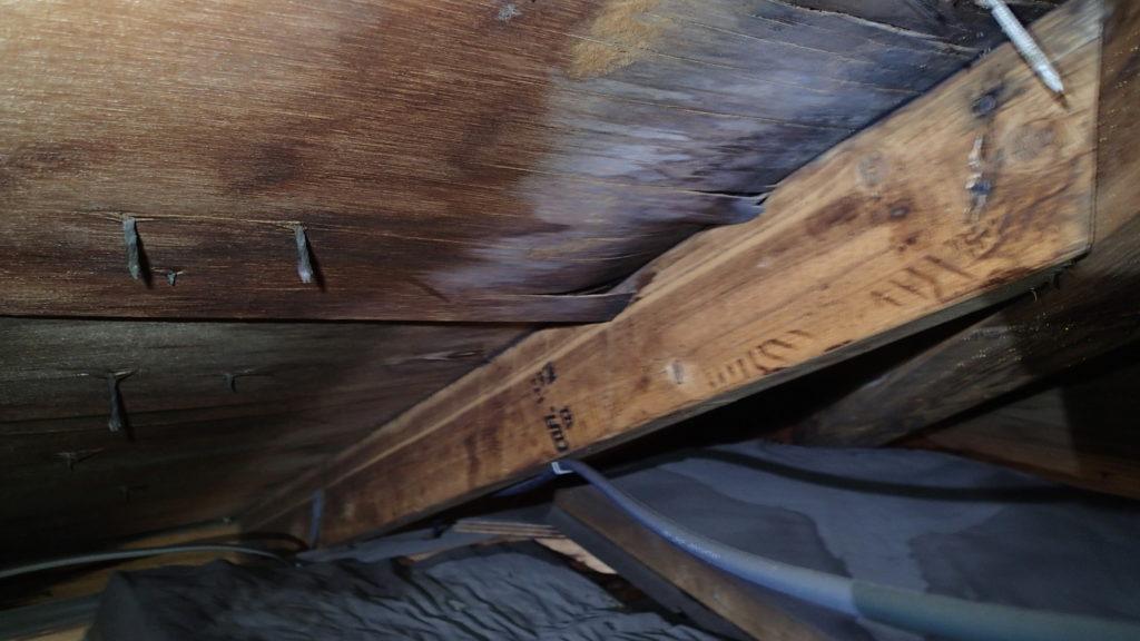 棟板金、浮き、釘抜け、雨漏り、野地板水染み